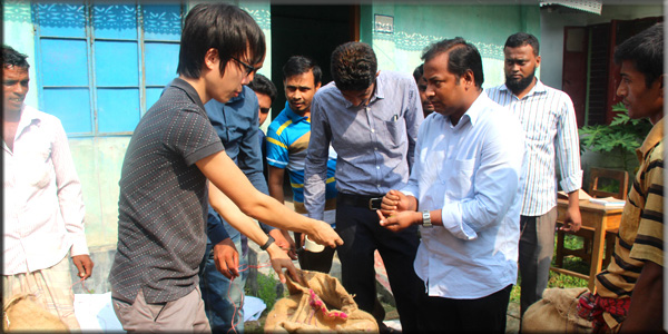 Export of Mung bean to Japan under Value Chain Development